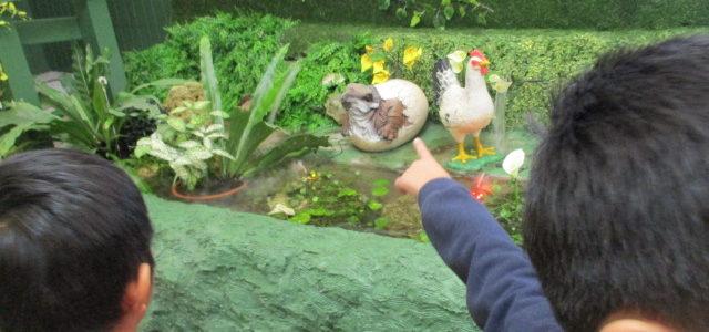 ドキドキのミニミニ動物園(*^^*)